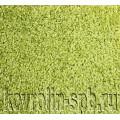 Фьюжн зеленый